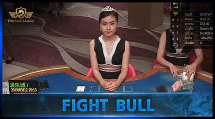 Dream Gaming Fight bull